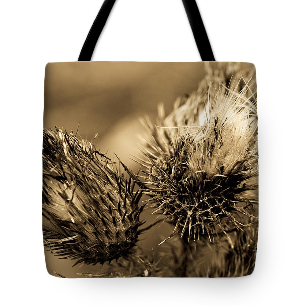 Outdoors Tote Bag featuring the photograph Barbed Beauties by Venetta Archer