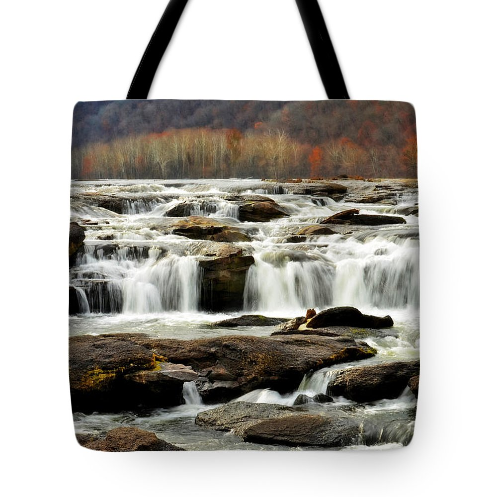 Tote Bag featuring the photograph Bare Beauty by Lj Lambert