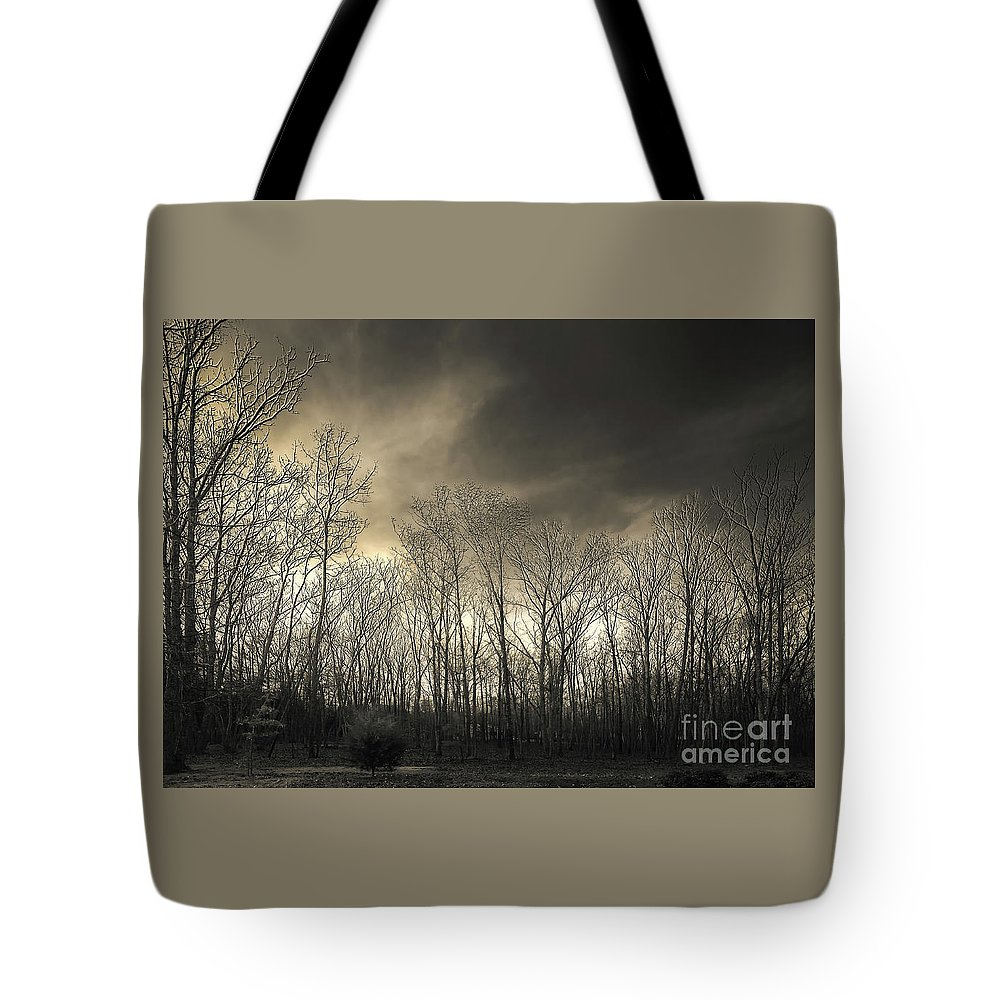 Tokina Wide Angle Test Shots Tote Bag featuring the photograph Bare Trees In A Winter Sunset by Jennifer Mitchell