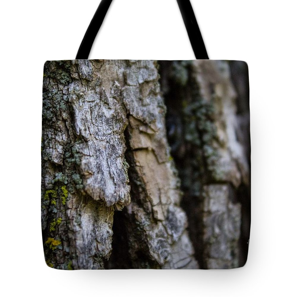 Tree Tote Bag featuring the photograph Bark At The Park by Lisa Knauff