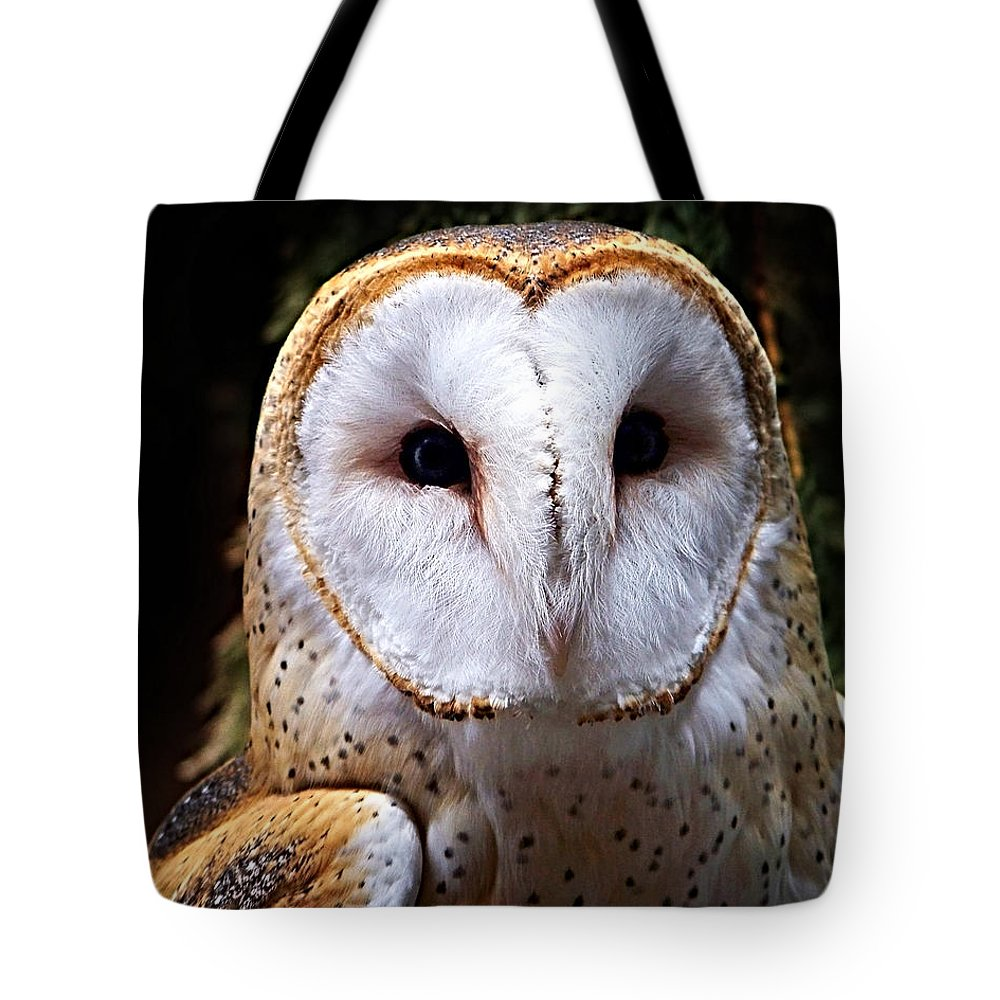 Barn Owl Tote Bag featuring the photograph Barn Owl by Anthony Jones