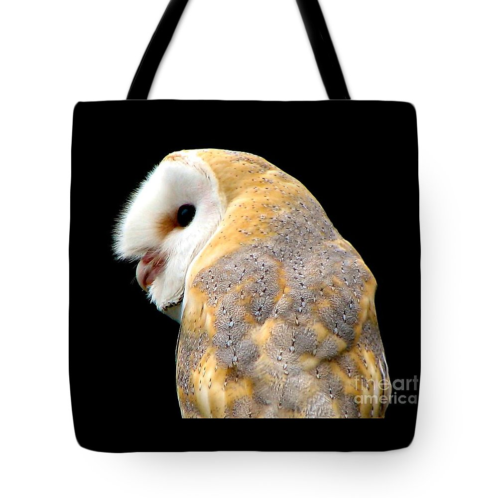 Birds Tote Bag featuring the photograph Barn Owl by Rose Santuci-Sofranko