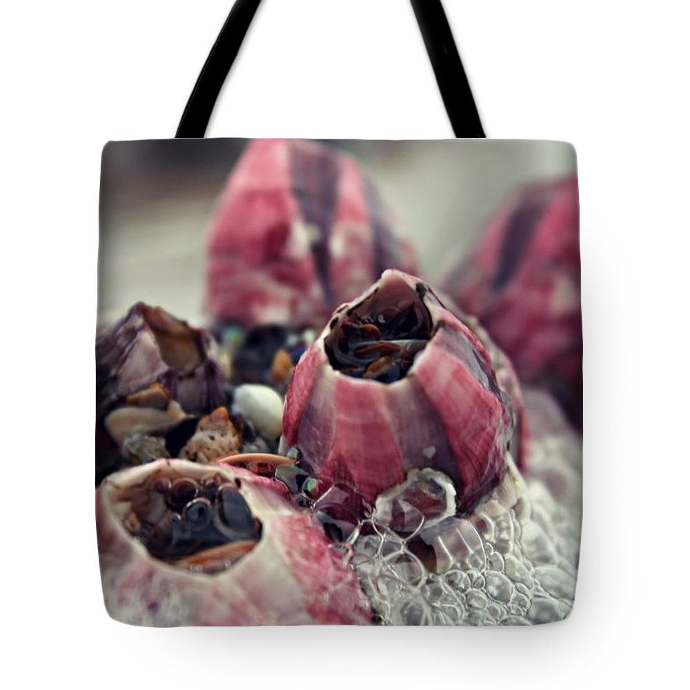 Pink Tote Bag featuring the photograph Barnacles by Brittany Strelluf