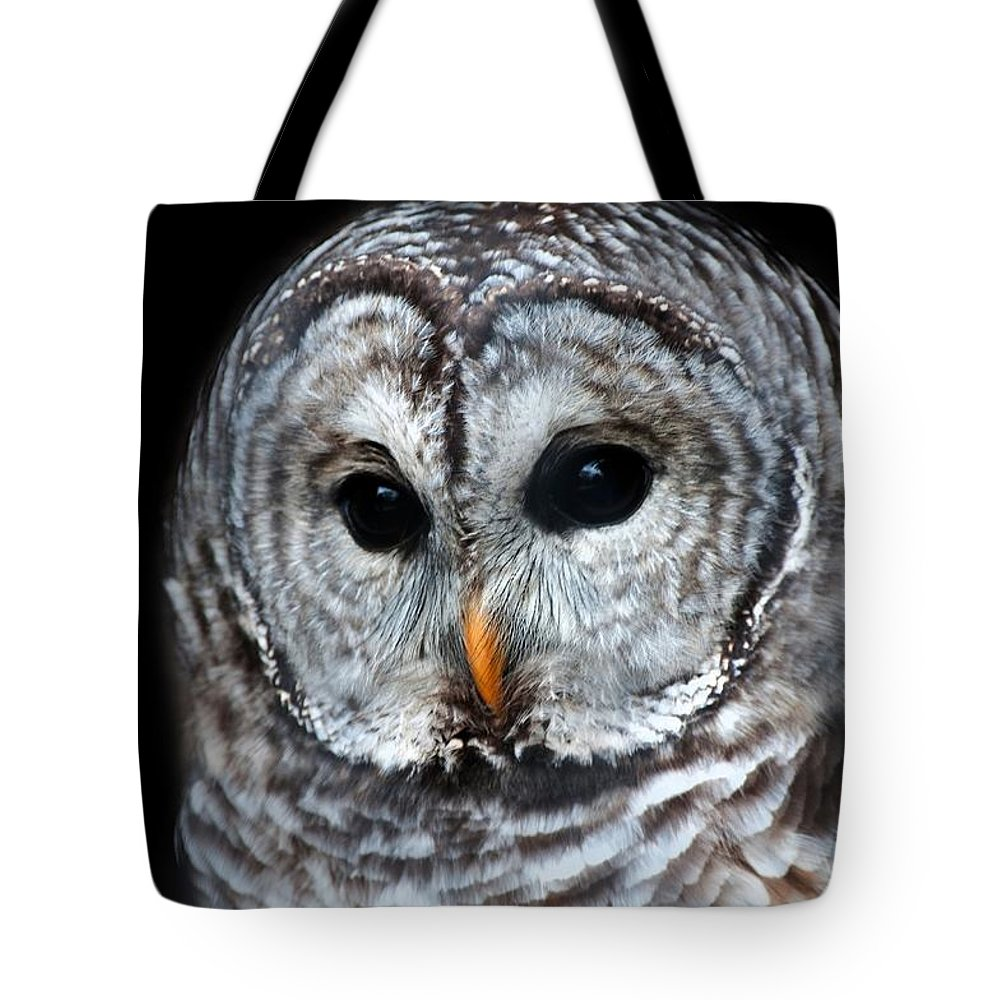 Barred Owl Tote Bag featuring the photograph Barred Owl Portrait by CR Courson