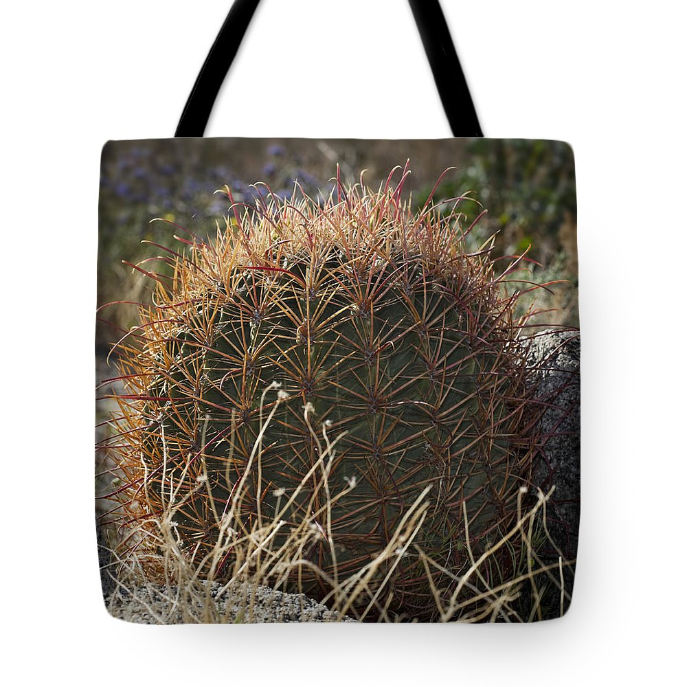 Barrel Cactus Tote Bag featuring the photograph Barrel Cactus by Kelley King
