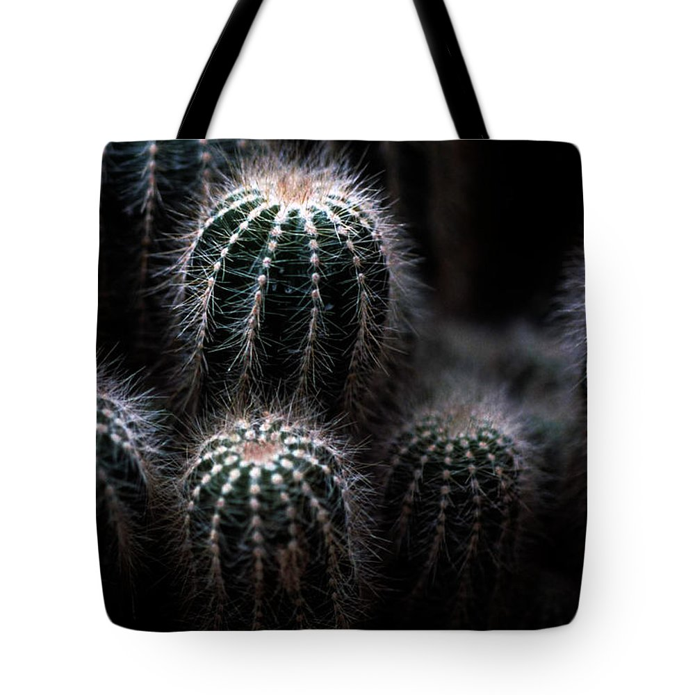 Brrel Cacus Tote Bag featuring the photograph Barrel Cactus by Laurie Paci