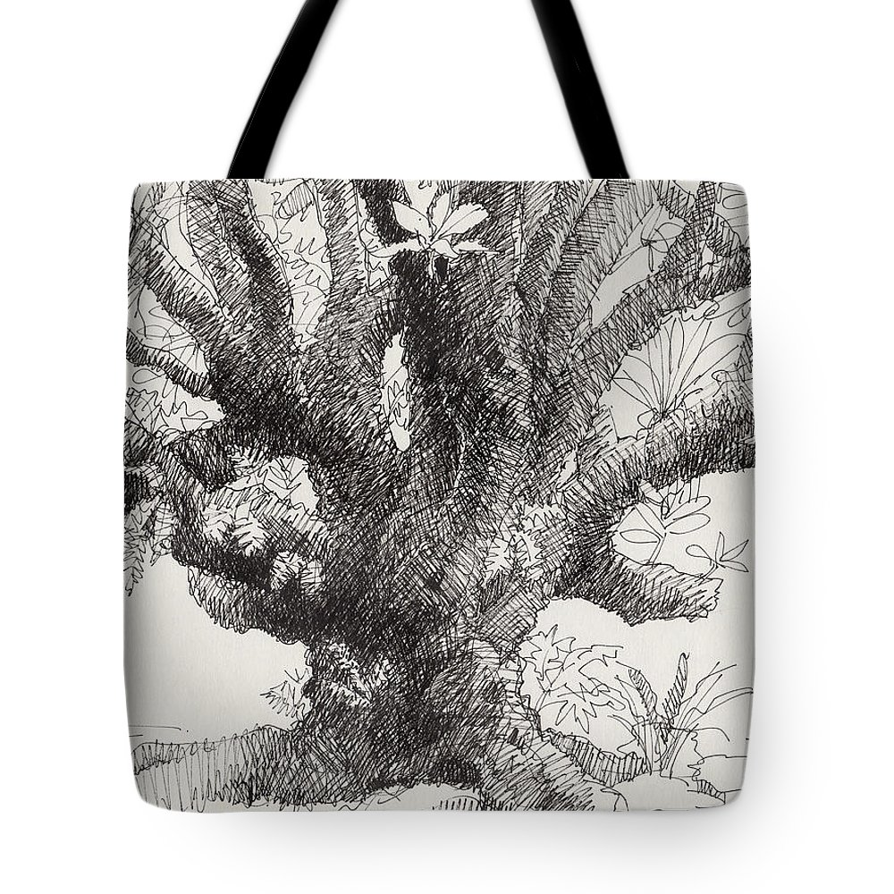 Plant Tote Bag featuring the drawing Barringtonia Tree by Judith Kunzle