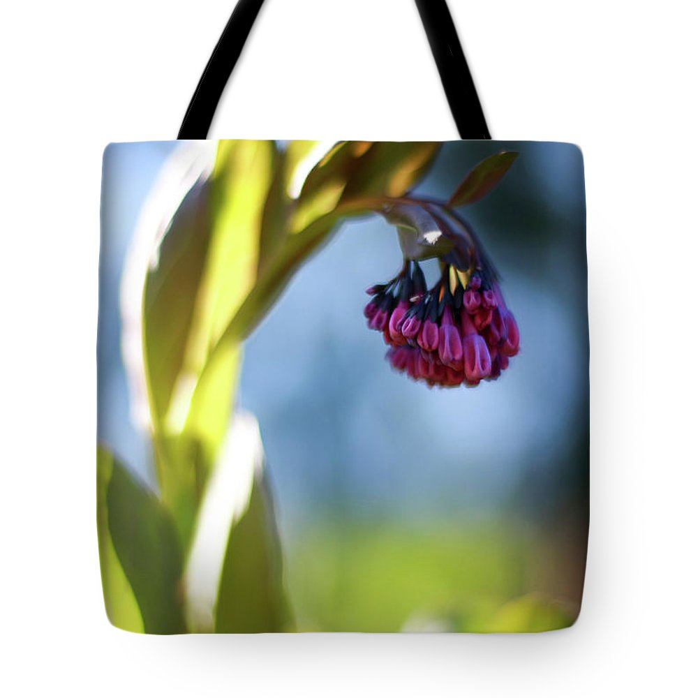 Botanical Tote Bag featuring the photograph Basking Beauty by Martina Schneeberg-Chrisien