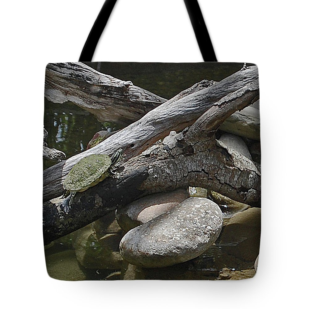 Turtles Tote Bag featuring the digital art Basking In The Florida Sun by DigiArt Diaries by Vicky B Fuller