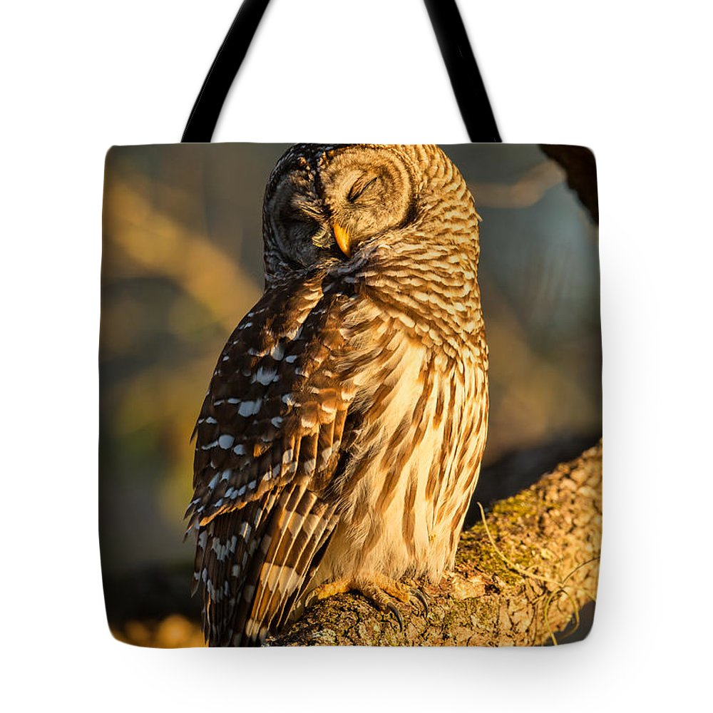 David Eppley Tote Bag featuring the photograph Bathed In Sunset by David Eppley