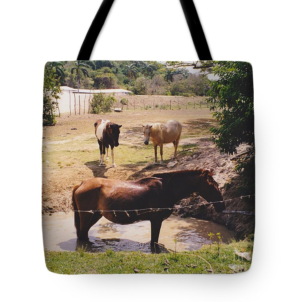 Horses Tote Bag featuring the photograph Bathing Horse by Michelle Powell