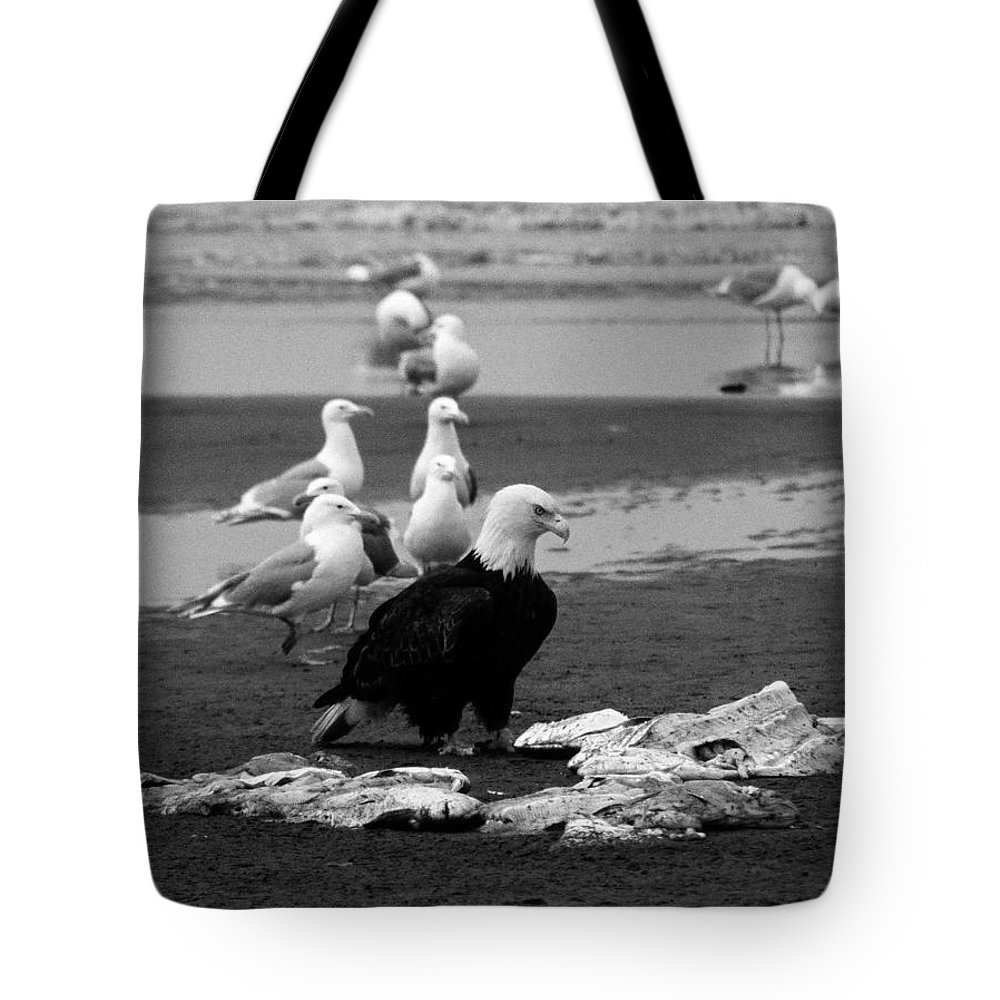 North America Tote Bag featuring the photograph Be Hungry ... by Juergen Weiss