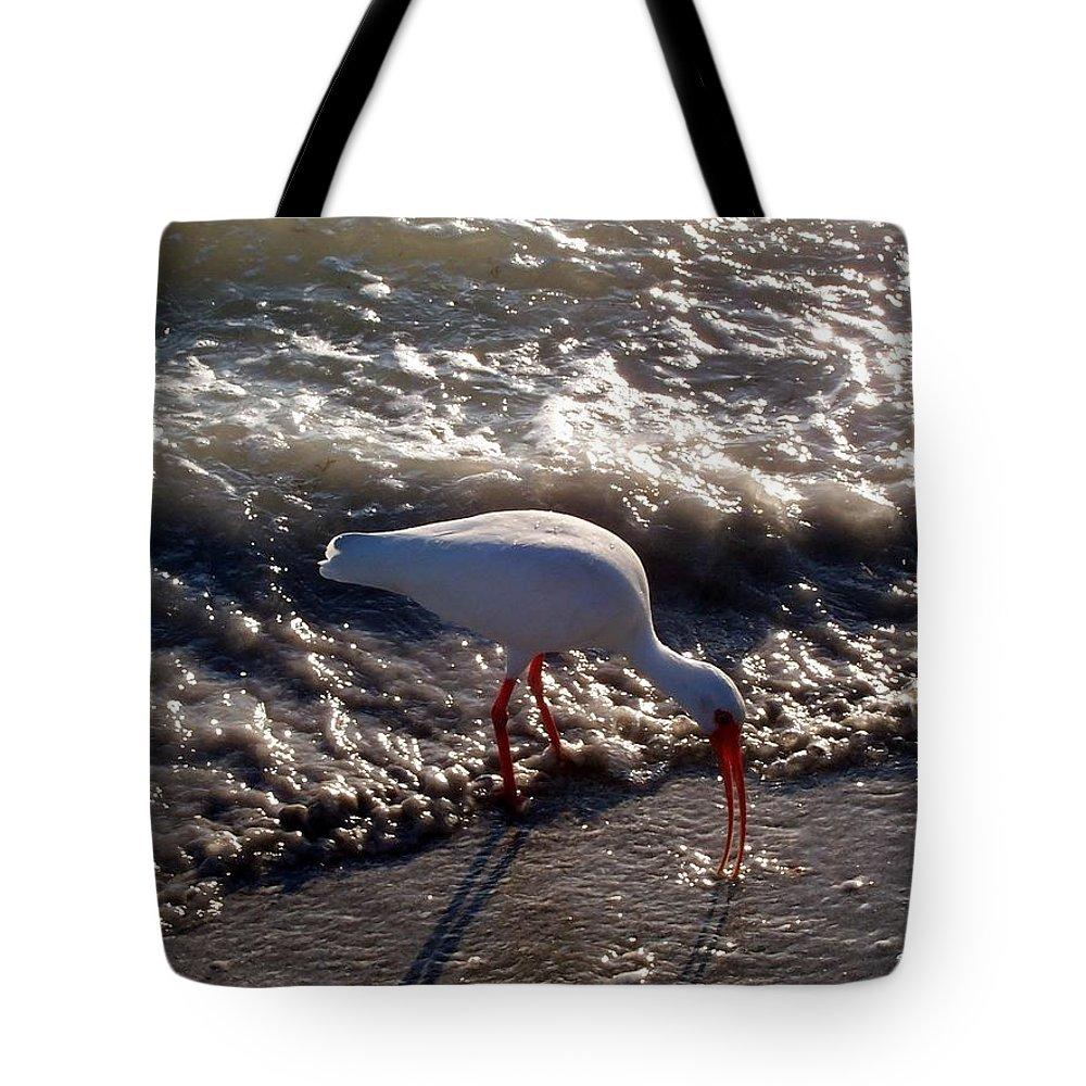 Beach Tote Bag featuring the photograph Beach Bird by Elizabeth Klecker