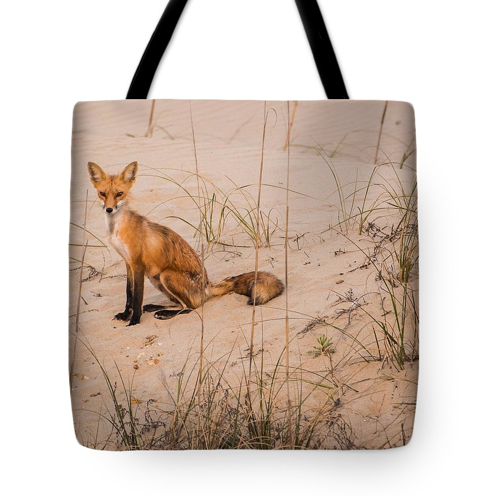 Red Fox Tote Bag featuring the photograph Beach Fox by MCM Photography