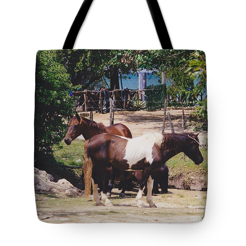 Horses Tote Bag featuring the photograph Beach Horses by Michelle Powell