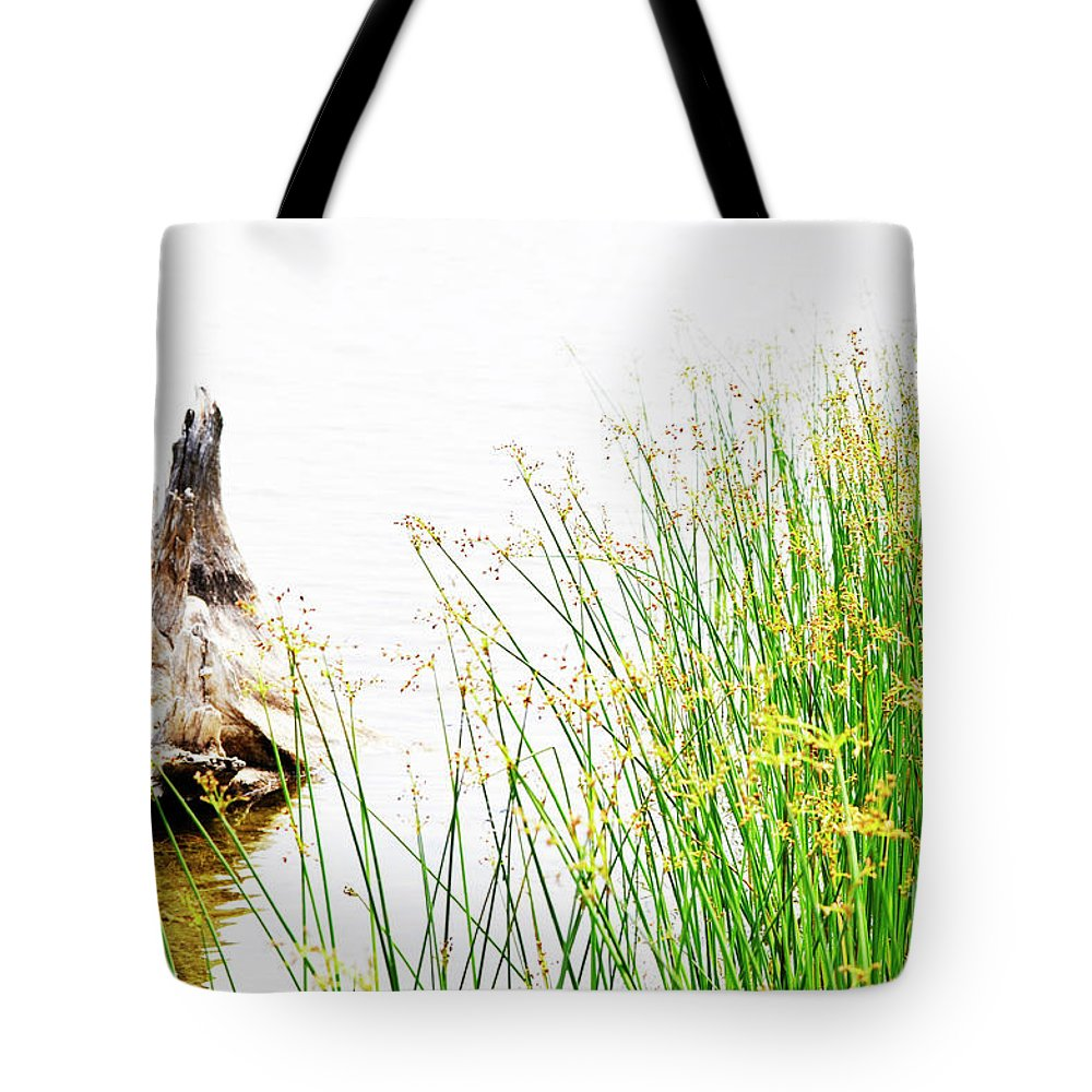 Beach Tote Bag featuring the photograph Beach Love by Traci Cottingham