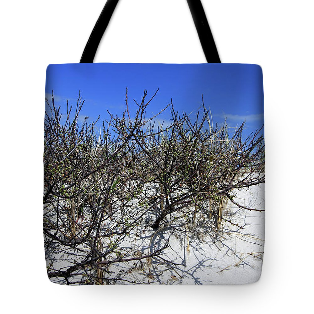 Landscape Tote Bag featuring the photograph Beach Plums Before Bloom by Mary Haber