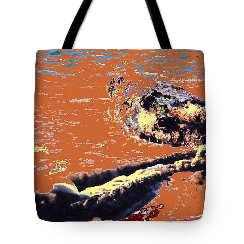 Rope Tote Bag featuring the photograph Beach Rope by Ian MacDonald