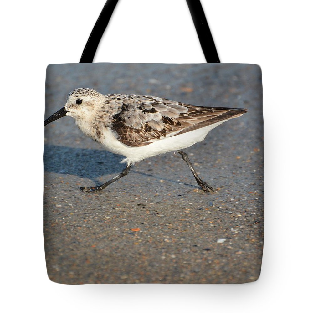 Sanderling Tote Bag featuring the photograph Beach Run by Dan Williams