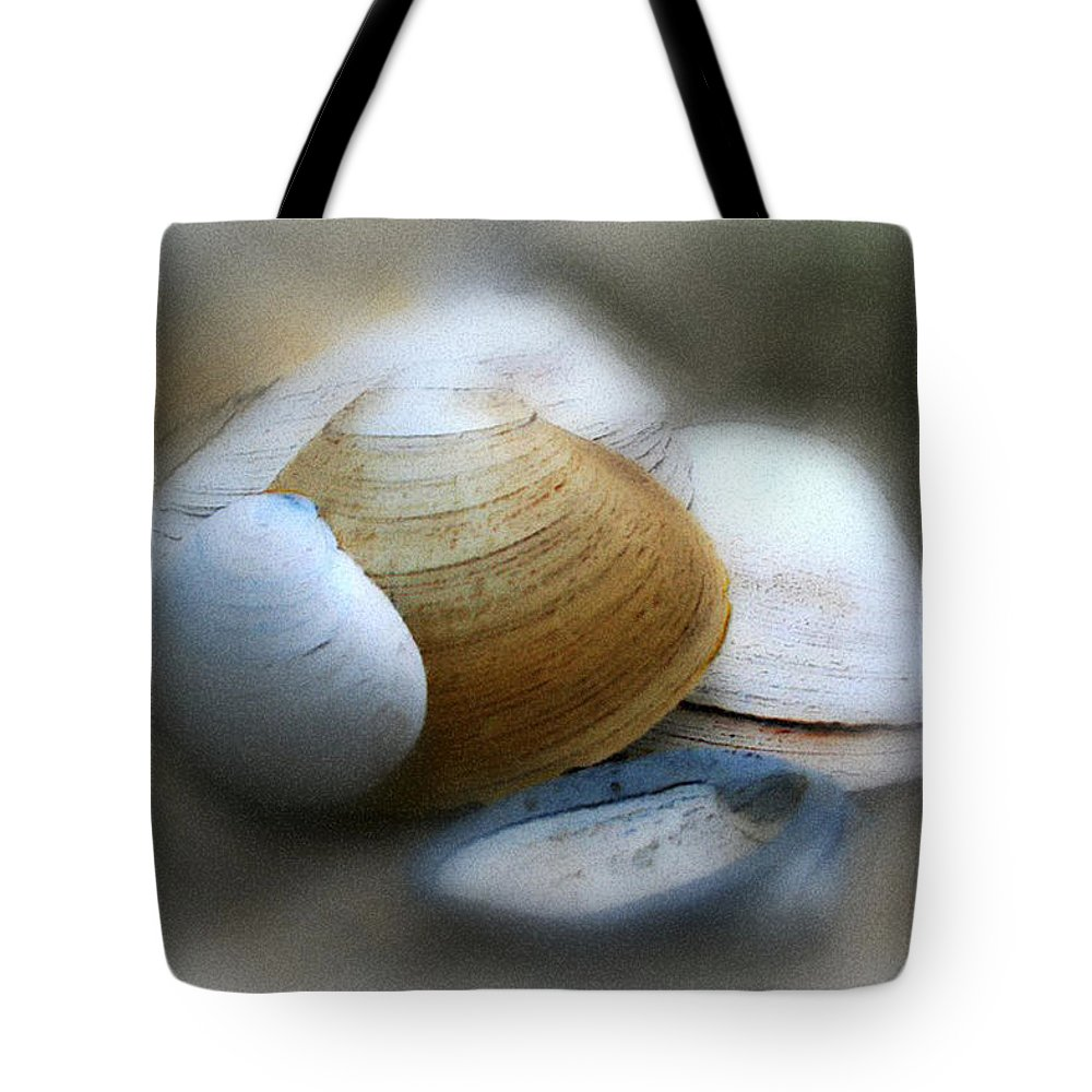 Nature Tote Bag featuring the photograph Beach Shells by Linda Sannuti