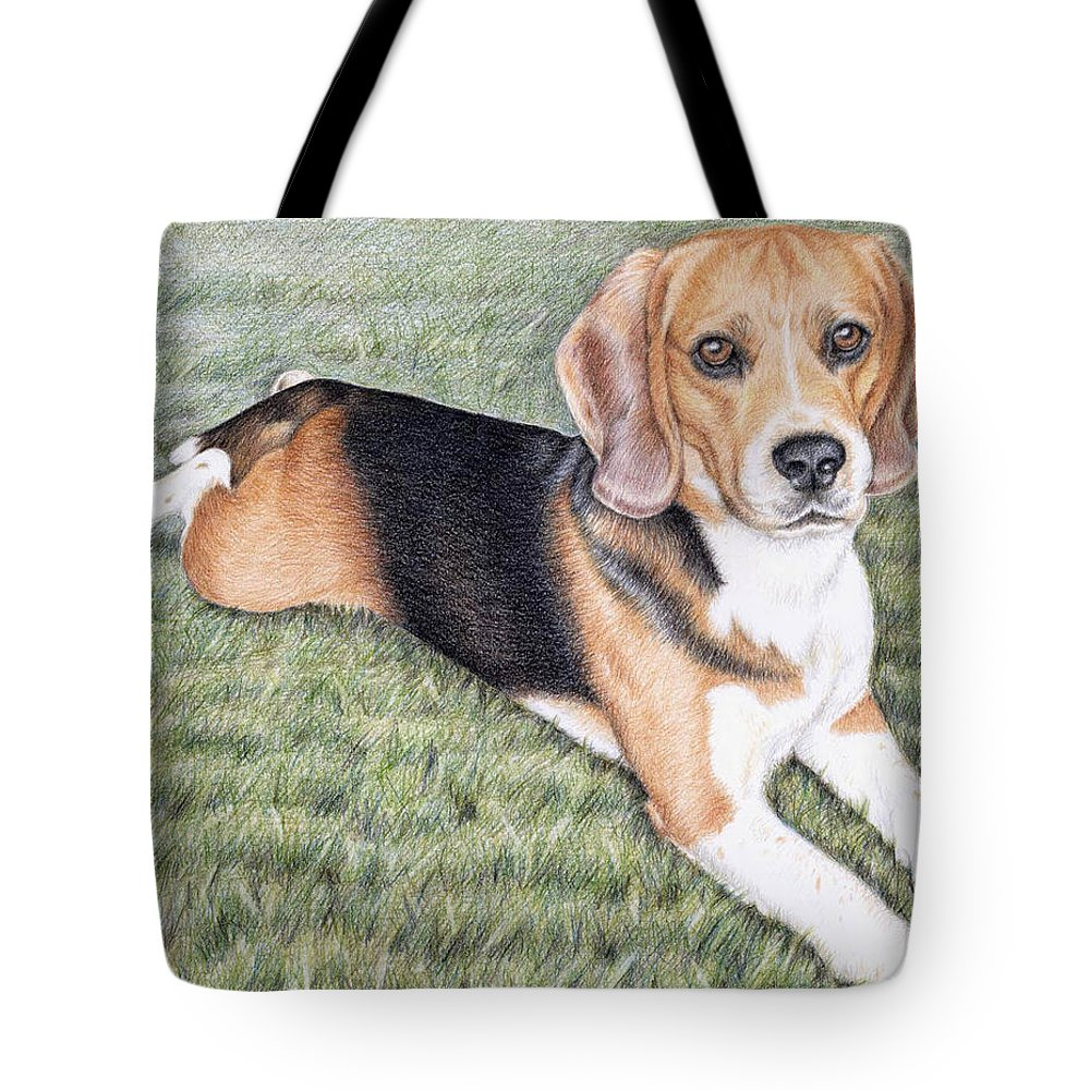 Dog Tote Bag featuring the drawing Beagle by Nicole Zeug