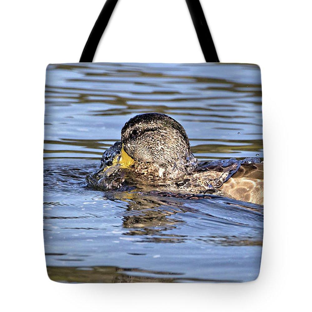 Mallard duck shower curtain - Tote Bags