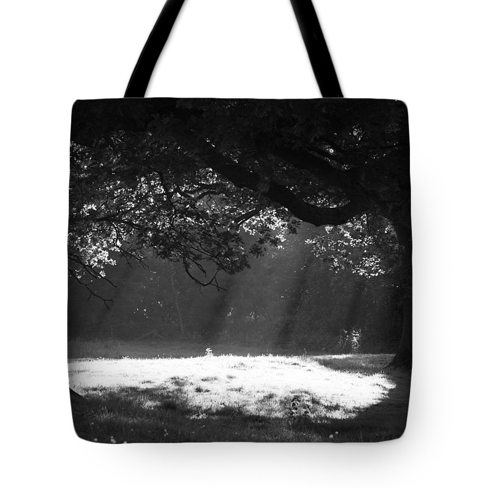 Beams Tote Bag featuring the photograph Beams Of Light by Hazy Apple