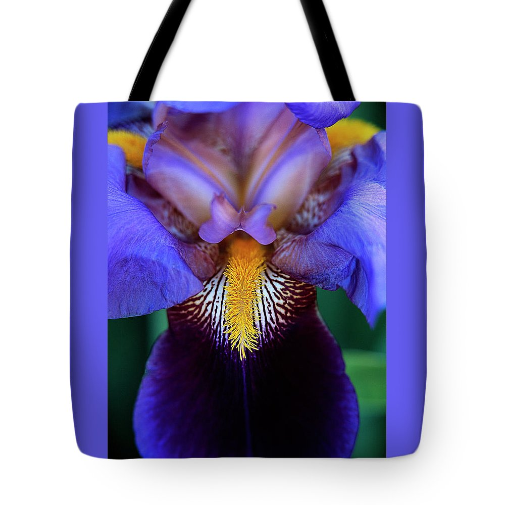 Flowers Tote Bag featuring the photograph Bearded Iris by Jim Benest