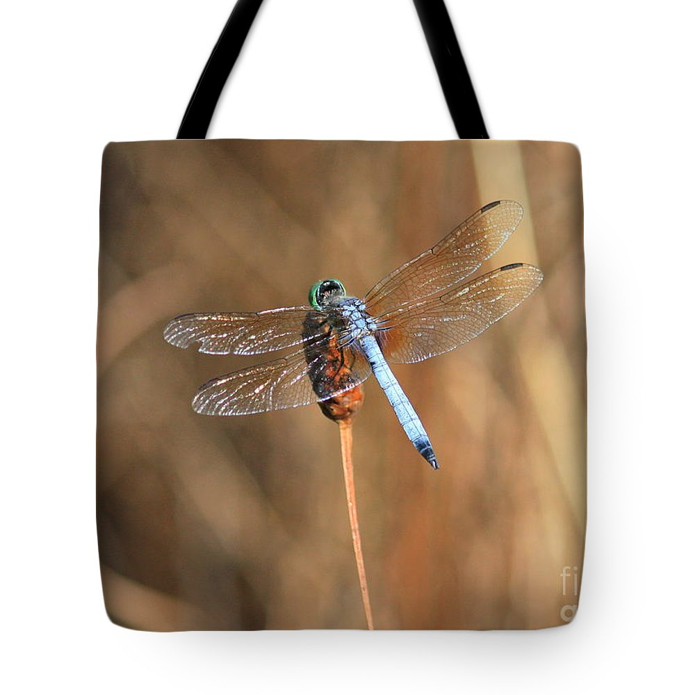 Dragonfly Tote Bag featuring the photograph Beautiful Broken Wing by Carol Groenen