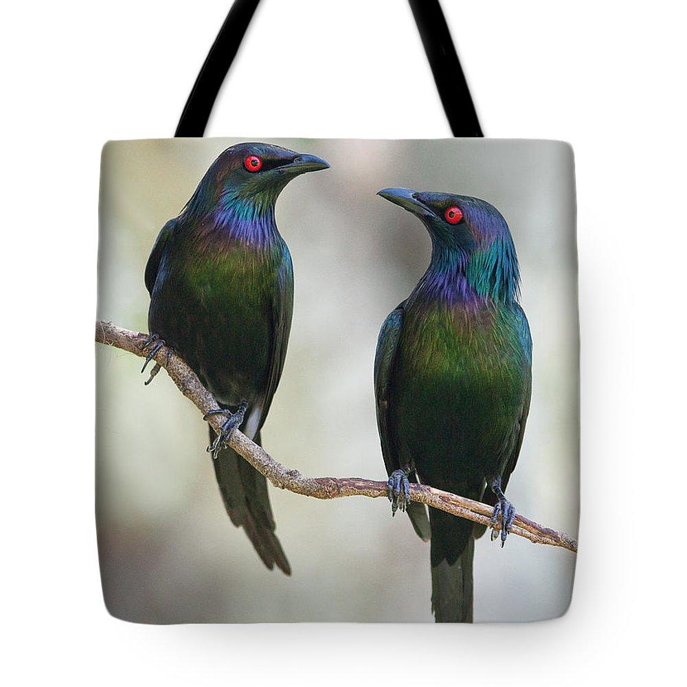 Starlings Tote Bags