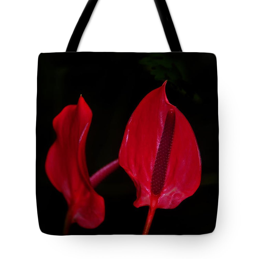 Red Tote Bag featuring the photograph Beautiful In Red by David Lee Thompson