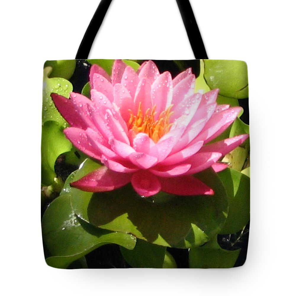 Nature Tote Bag featuring the photograph Beautiful by Line Gagne