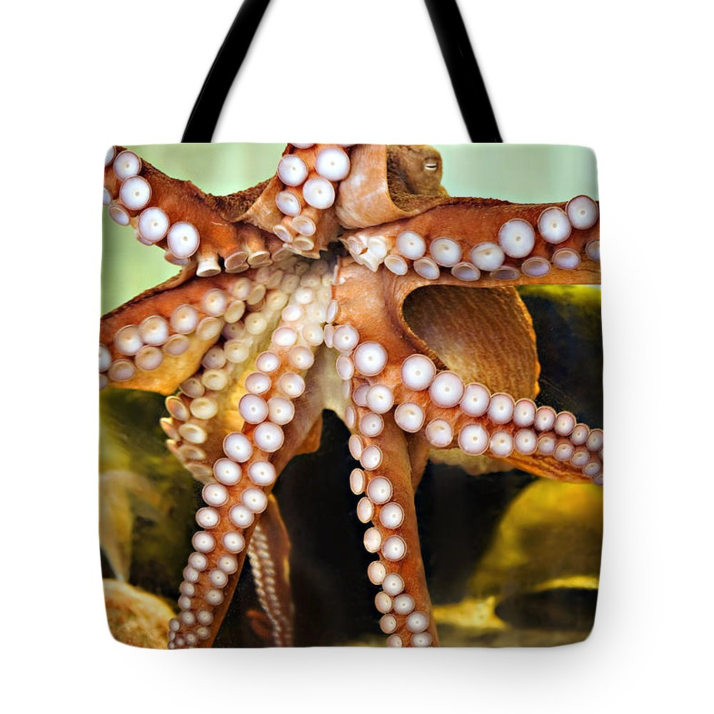 Octopus Tote Bag featuring the photograph Beautiful Octopus by Marilyn Hunt