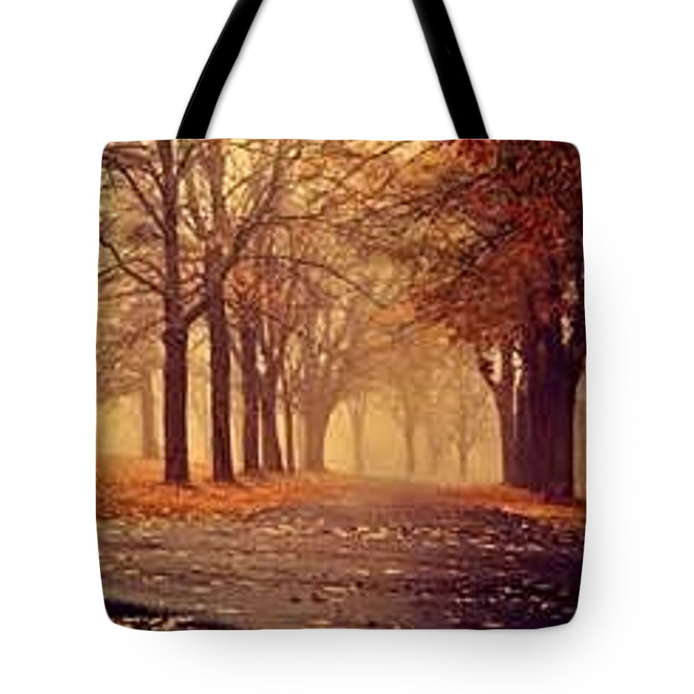 Love-sites Tote Bag featuring the photograph Beautiful Sceen by Love-sites