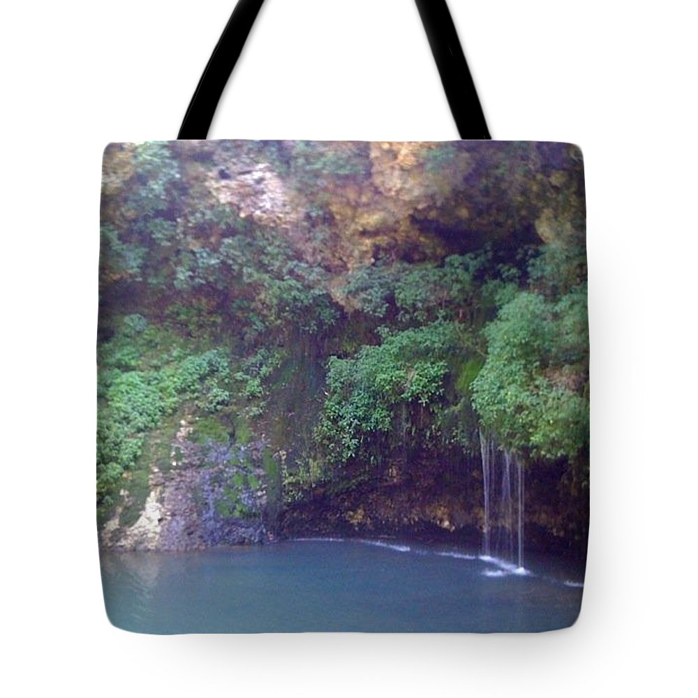 National Park Tote Bag featuring the photograph Beauty by Cheyene Vandament