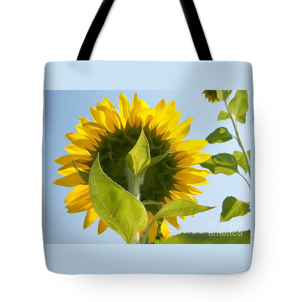 Sunflower Tote Bag featuring the photograph Beauty However You Look At It by Ann Horn