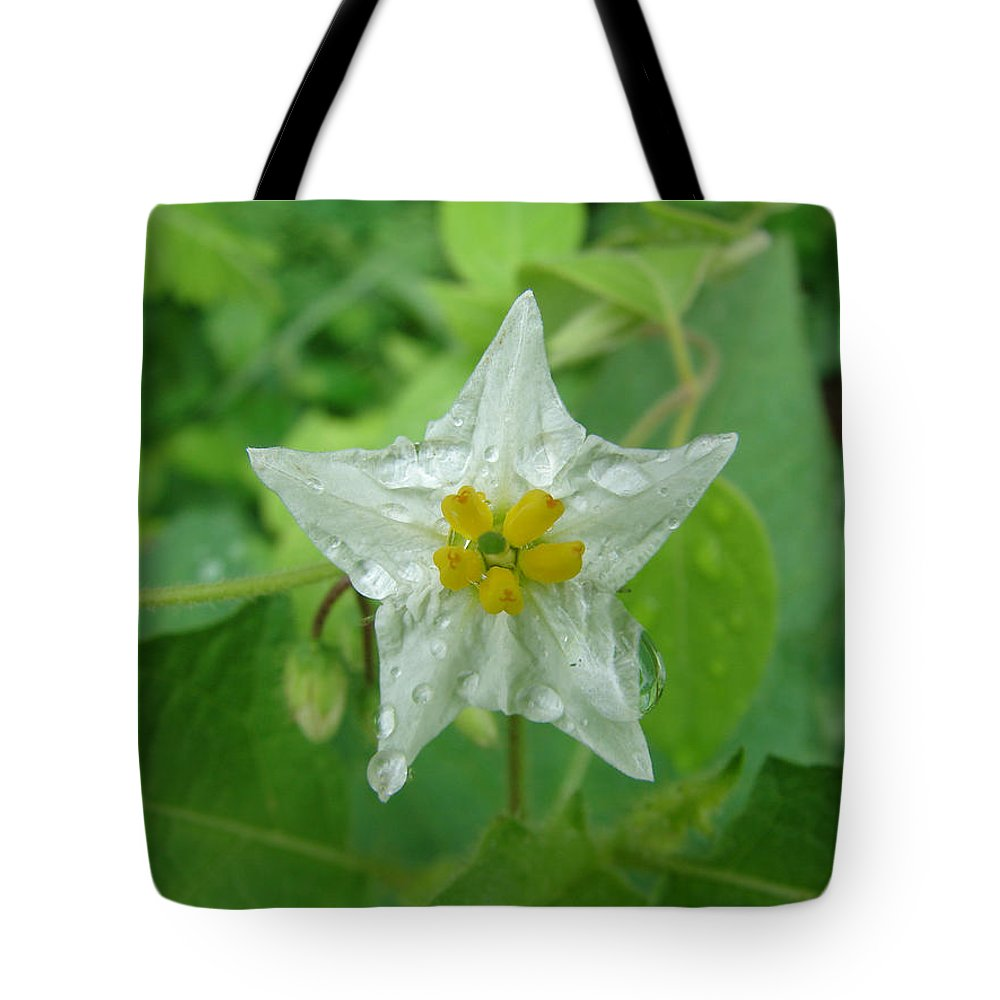 Green Flower White Water Drop Tote Bag featuring the photograph Beauty In All Sizes by Luciana Seymour