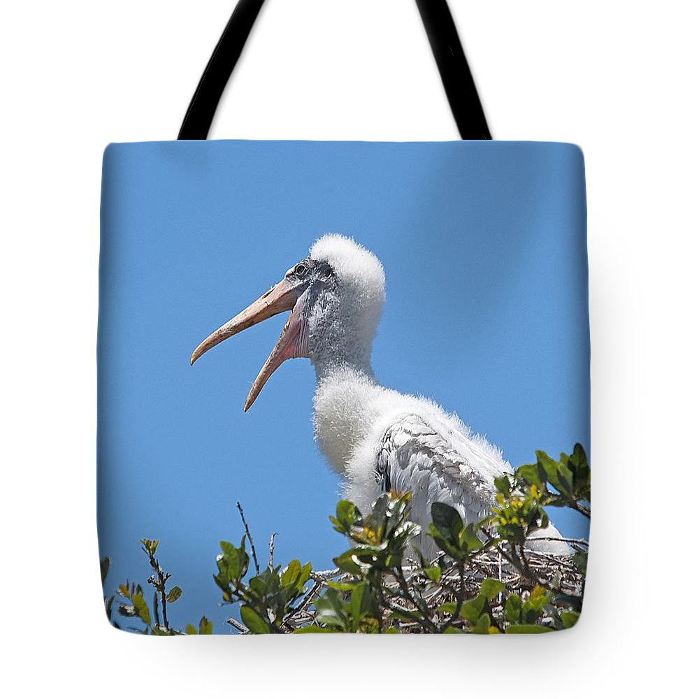 Wildlife Tote Bag featuring the photograph Beauty Is In The Eye Of The Beholder by Kenneth Albin