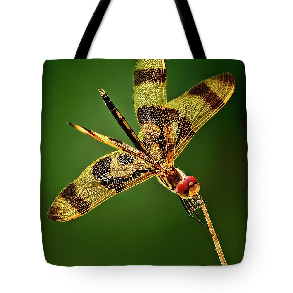 Dragonfly Tote Bag featuring the photograph Beauty Marks by Pedro Lastra