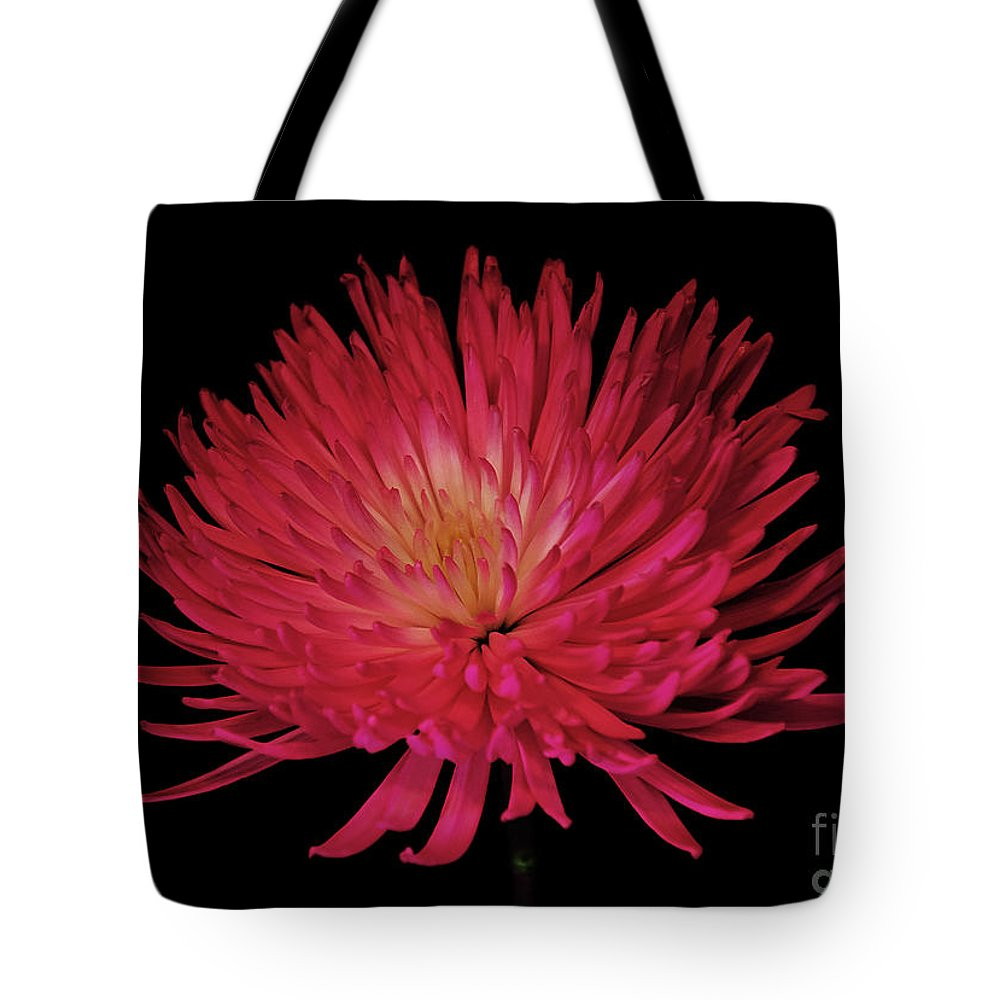 Beauty Tote Bag featuring the photograph Beauty by Ray Shrewsberry