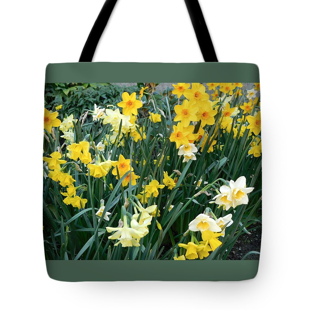 Scene Tote Bag featuring the photograph Bed Of Daffodils by Maro Kentros