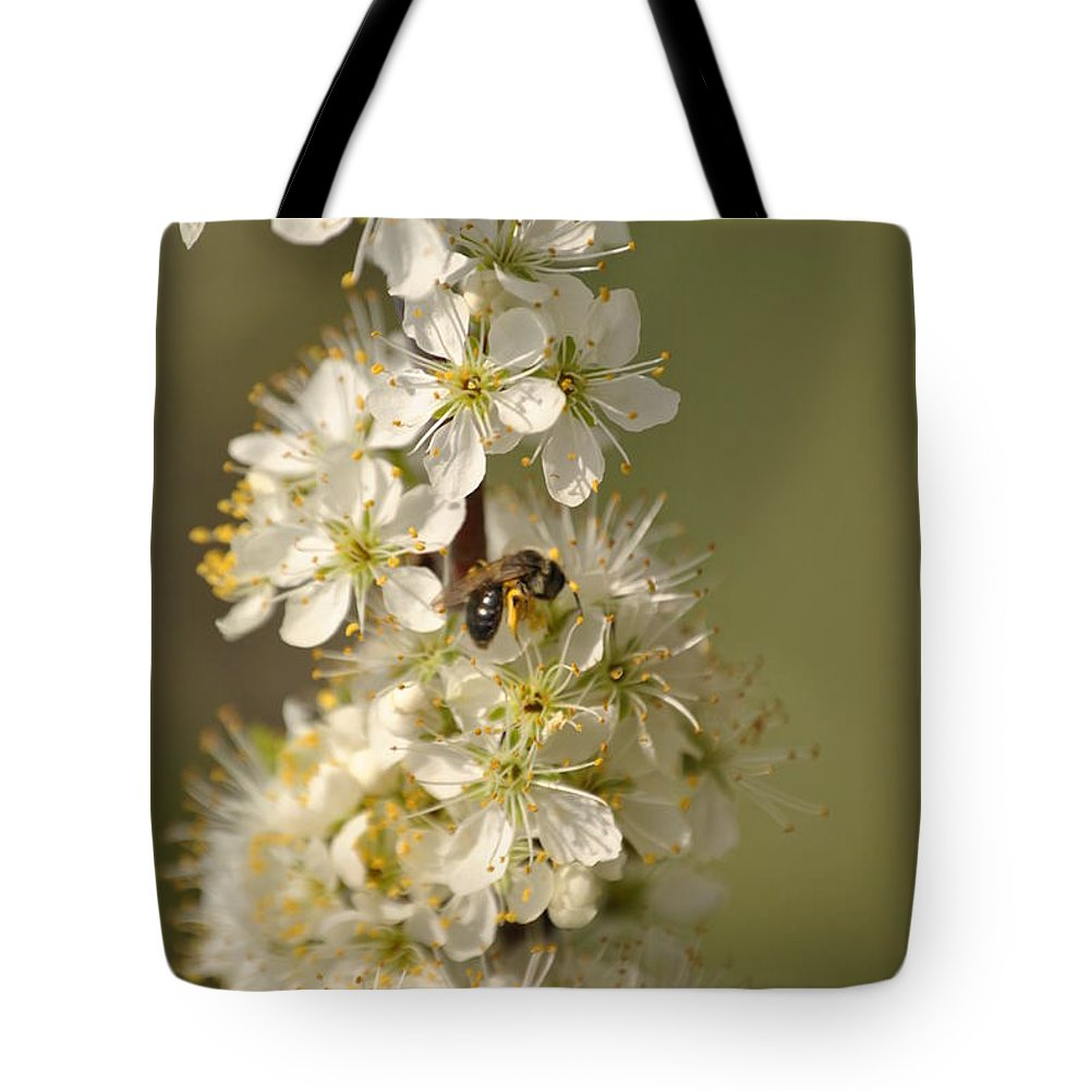 Bee Tote Bag featuring the photograph Bee And Blossoms by Eric Liller