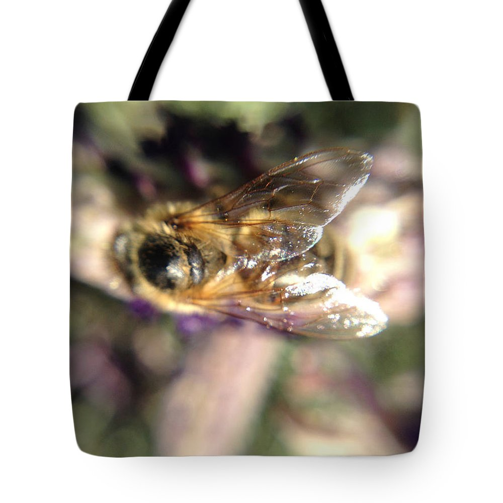 Bee Tote Bag featuring the photograph Bee Bee by Michelle Ngaire