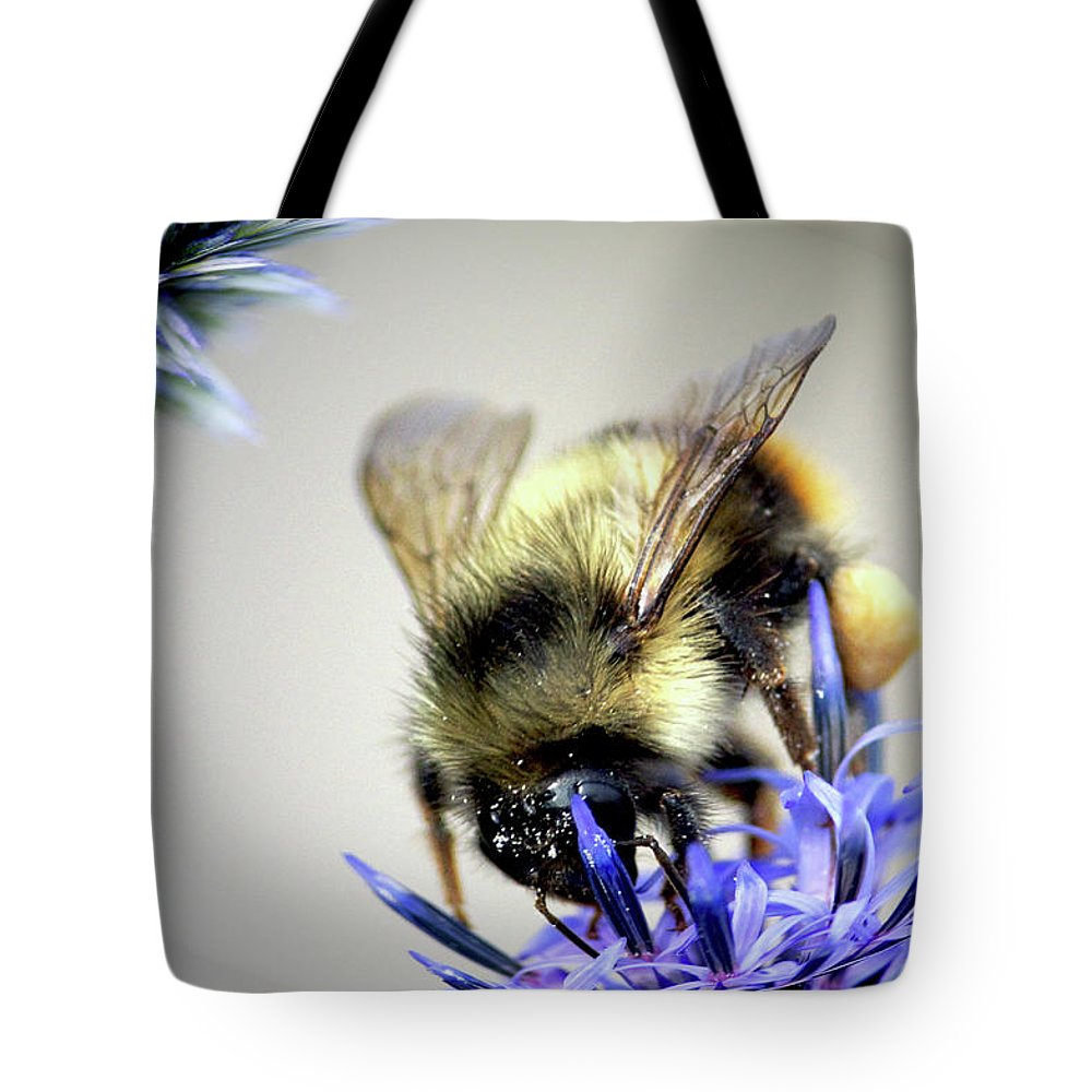 Sharon Talson Tote Bag featuring the photograph Bee In A Bubble by Sharon Talson