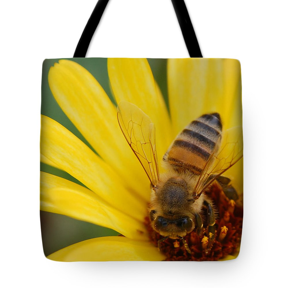 Bee Tote Bag featuring the photograph Bee On Flower by Amy Fose