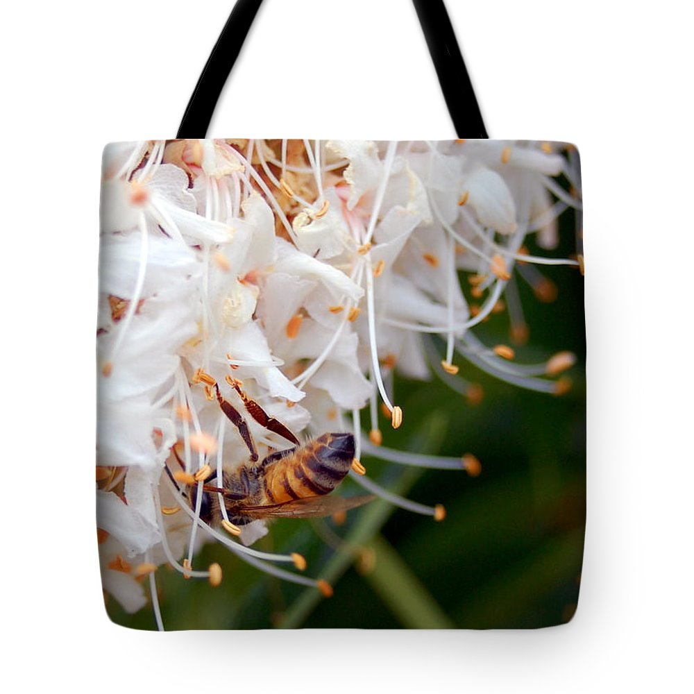 Flower Tote Bag featuring the photograph Bee On Flowers 1 by Amy Fose