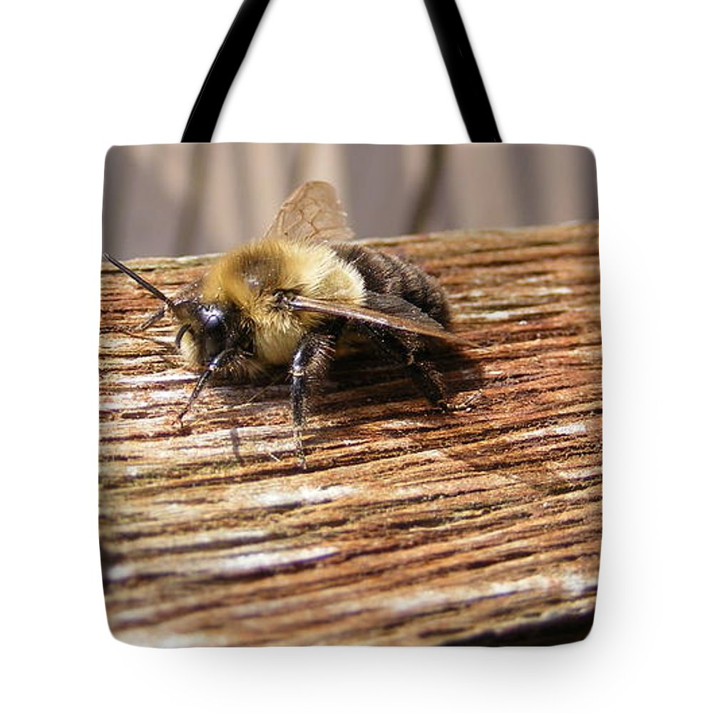 Bee Tote Bag featuring the photograph Bee-u-tiful by Ed Smith