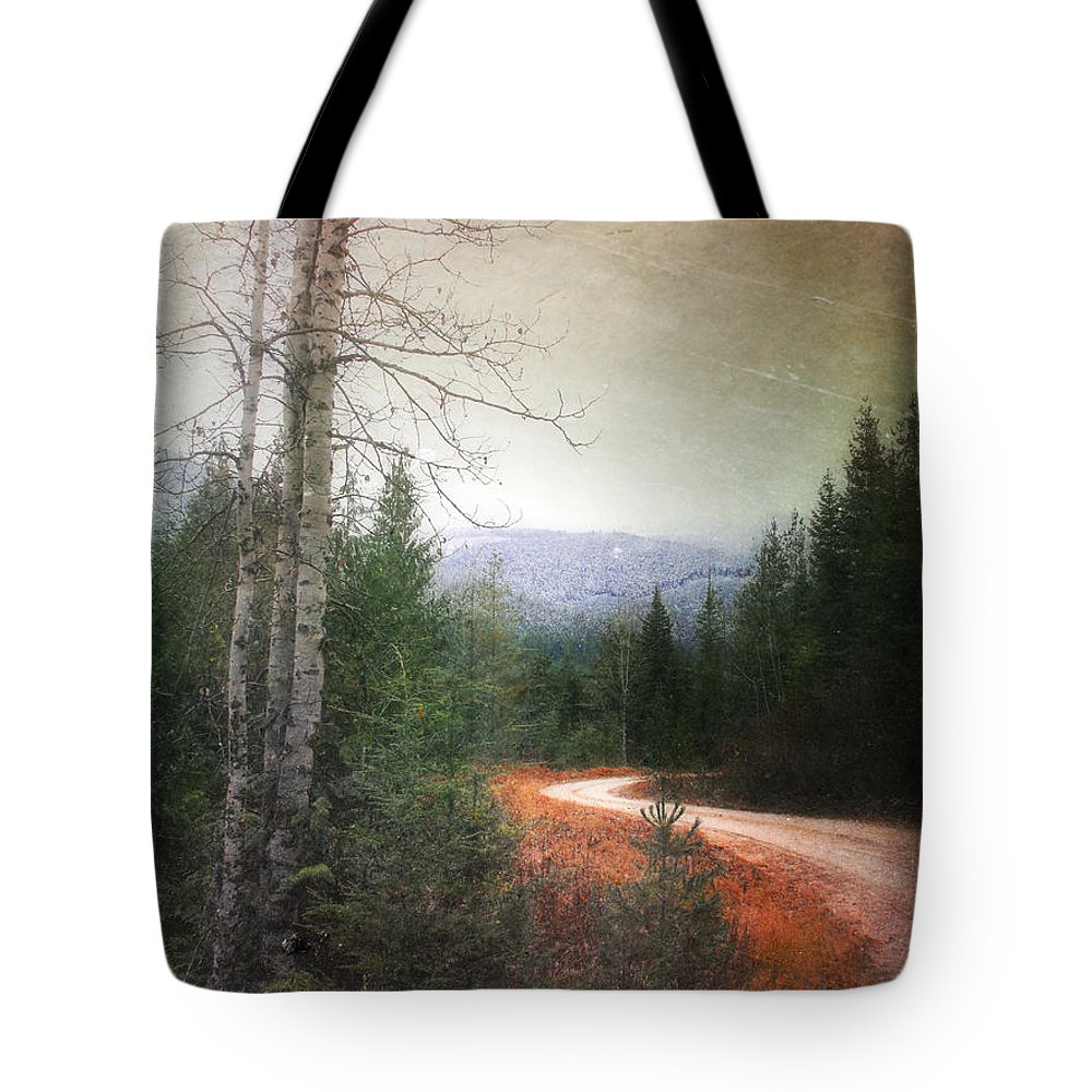 Rpad Tote Bag featuring the photograph Before The Snow by Tara Turner