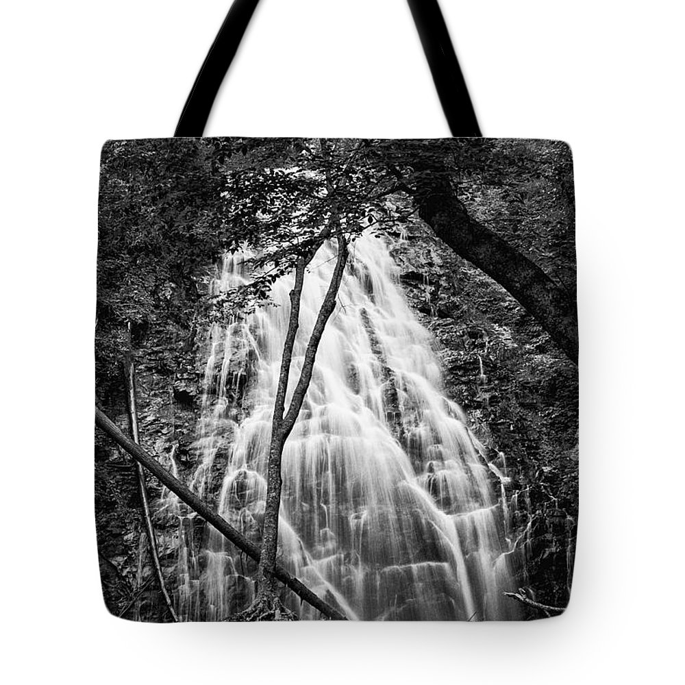 Landscape Tote Bag featuring the photograph Behind The Tree-bw by Joye Ardyn Durham