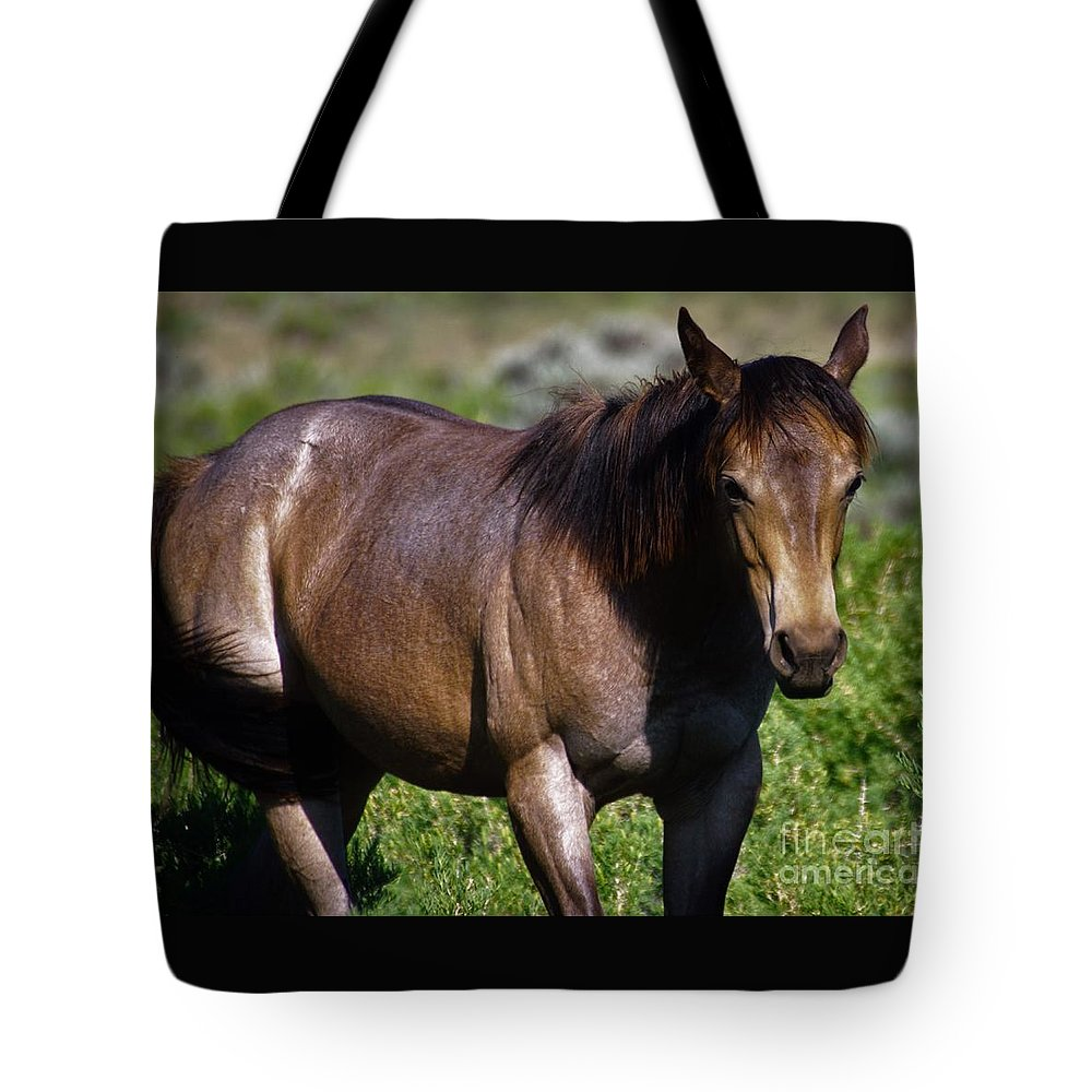 Horse Tote Bag featuring the photograph Being Free by Merle Grenz